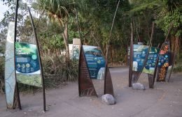 Find out about Noosa National Park by visiting the outdoor display in the Headland section day-use area.